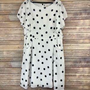 A New Day Black and White Polka Dot Dress